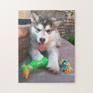 Alaskan Malamute Puppy Close-Up Photograph Jigsaw Puzzle