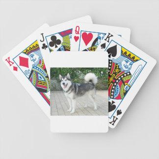 Alaskan Malamute Puppy Dog Bicycle Playing Cards