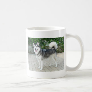 Alaskan Malamute Puppy Dog Coffee Mug