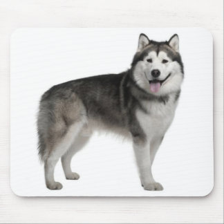Alaskan Malamute Puppy Dog Mousepad