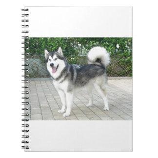 Alaskan Malamute Puppy Dog Notebooks