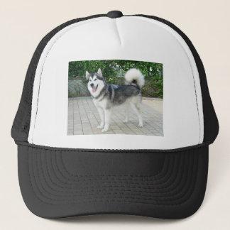 Alaskan Malamute Puppy Dog Trucker Hat