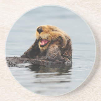 Alaskan Sea Otter Coaster