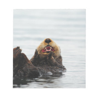 Alaskan Sea Otter Notepads