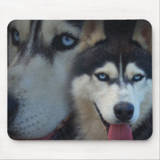 Alaskan Sled Dog - Husky Mouse Pad
