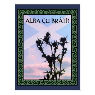 Alba Gu Bràth Scotland Alba Thistle Saltire Celtic Postcard
