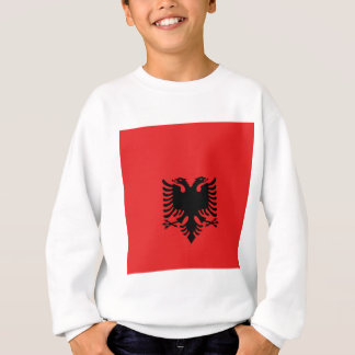 Albania All over design Sweatshirt