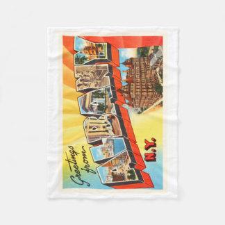 Albany New York NY Old Vintage Travel Souvenir Fleece Blanket