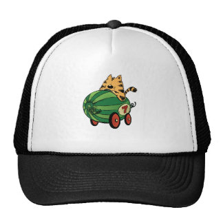 Albert and his watermelon ride trucker hat