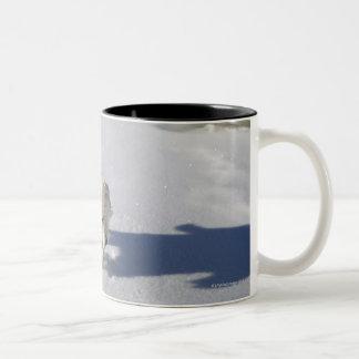 Alberta, Canada Two-Tone Coffee Mug