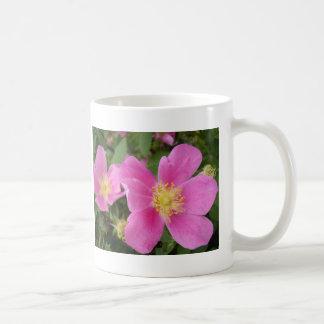 Alberta Wild Rose Mug