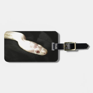 Albino Corn Snake Luggage Tag
