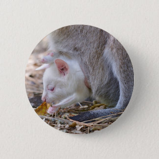 Albino joey in the pocket 2 inch round button
