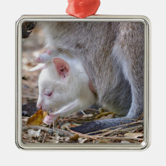 Albino joey in the pocket metal ornament