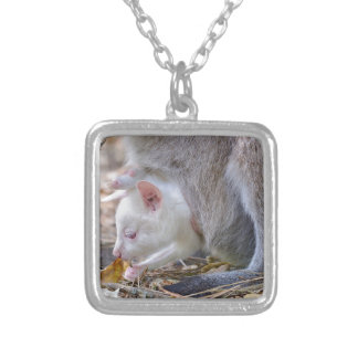 Albino joey in the pocket silver plated necklace