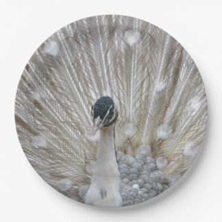 Albino Peacock Paper Plate