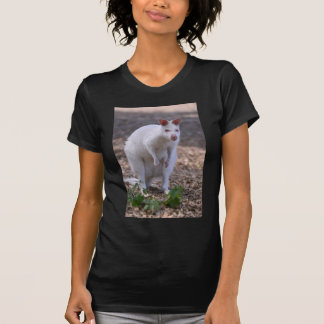 Albino Red-necked wallaby T-Shirt