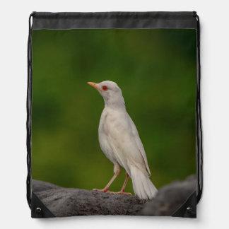 Albino Robin in Crown Point Drawstring Bag