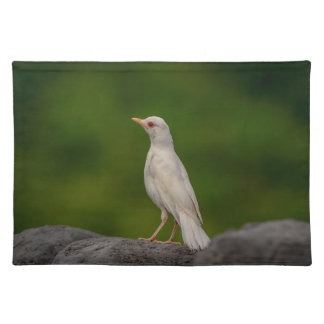 Albino Robin in Crown Point Placemat