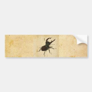 Albrecht Durer Stag Beetle Renaissance Vintage Art Bumper Stickers