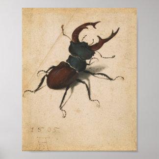 Albrecht Durer Stag Beetle Renaissance Vintage Art Poster