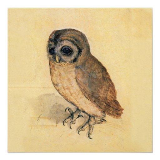 Albrecht Durer The Little Owl Announcement