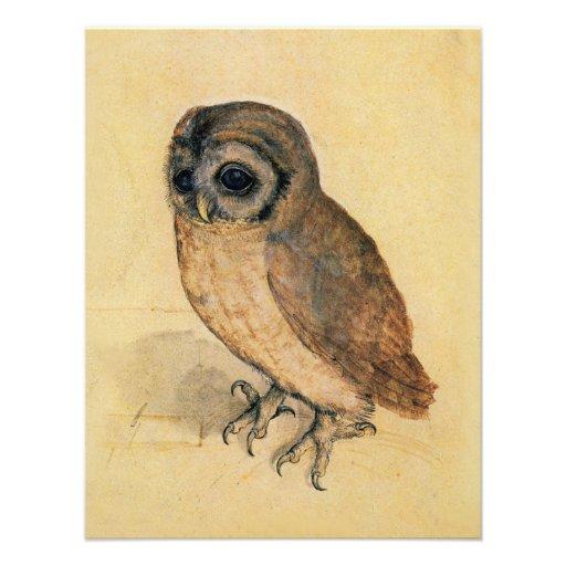 Albrecht Durer The Little Owl Custom Announcements