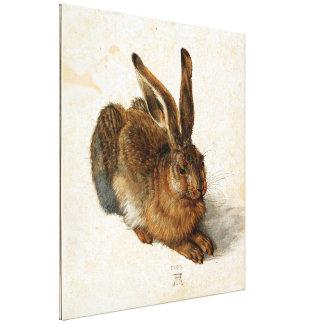 ALBRECHT DÜRER - Young hare 1502 Canvas Print
