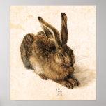 Albrecht Durer Young Hare Poster