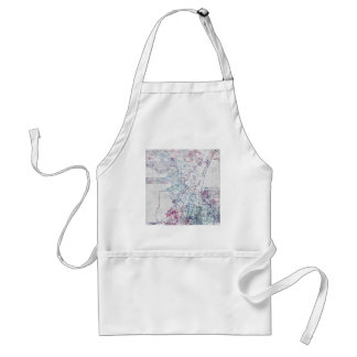 Albuquerque map painting standard apron