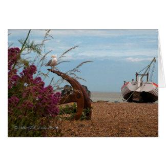 Aldeburgh seagull on beach. card