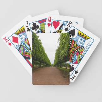 Aleksandria Historical Park Bicycle Playing Cards