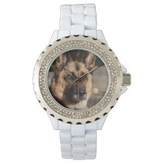 Alert German Shepherd Watch