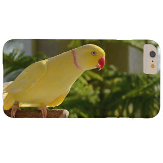 Alert Lutino Indian Ringneck Barely There iPhone 6 Plus Case