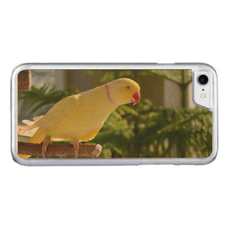Alert Lutino Indian Ringneck Carved iPhone 7 Case