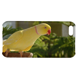 Alert Lutino Indian Ringneck iPhone 5C Cover