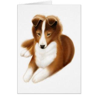 Alert Shetland Sheepdog Puppy Greeting Card
