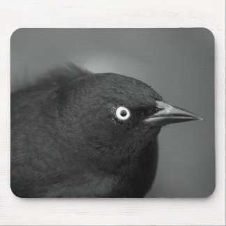 Alfred Hitchcock bird Mouse Pad