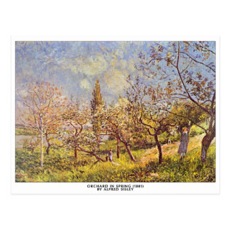 Alfred Sisley - Orchard in spring postcard