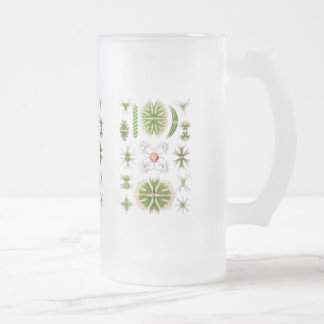 Algae Frosted Glass Beer Mug