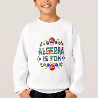 Algebra is Fun Sweatshirt