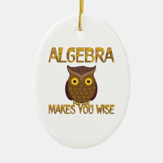Algebra Makes You Wise Ceramic Oval Ornament