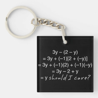 Algebra Why Should I Care Humor Keychain