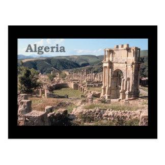 Algeria Roman Ruins Postcard