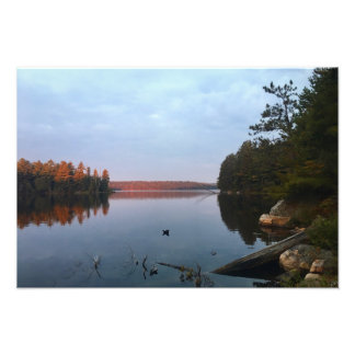 Algonquin Park Photo Print (1)