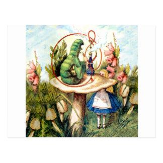 Alice and the Caterpillar in Wonderland Postcard