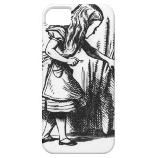 Alice Finds a Door iPhone 5 Cover