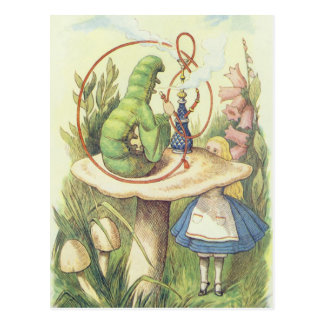 Alice Meets the Caterpillar Postcard