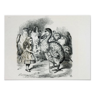 Alice meets the Dodo Poster