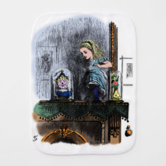 Alice & the Looking Glass Burp Cloth